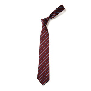 Thin Stripe Tie - Maroon & Saxe