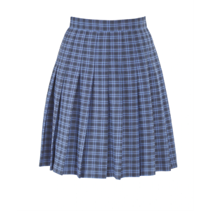 Tartan Stitch Down Pleated Skirt Harris St John's Wood Academy