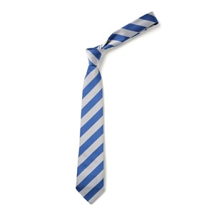 Broad Stripe Tie - Royal & White