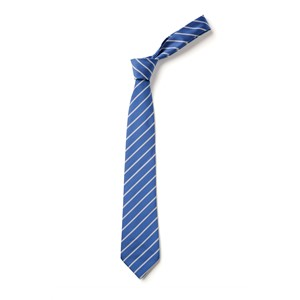 Thin Stripe Tie - Royal & White