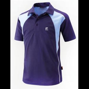 Polo Shirt Technical Raynes Park High (Unisex)