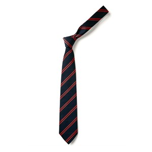 Double Stripe Tie - Navy & Red
