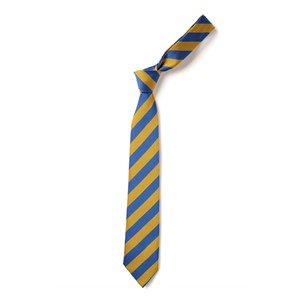 Broad Stripe Tie - Royal & Gold