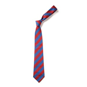 Broad Stripe Tie - Red & Royal