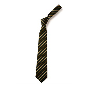 Thin Stripe Tie - Navy & Gold