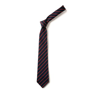 Thin Stripe Tie - Navy & Red