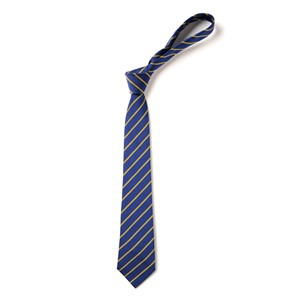 Thin Stripe Tie - Royal & Gold