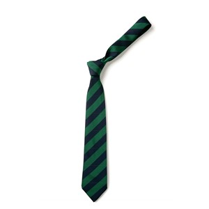 Broad Stripe Tie - Navy & Emerald
