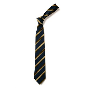Double Stripe Tie - Navy & Gold