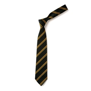 Double Stripe Tie - Black & Gold