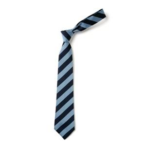 Broad Stripe Tie - Navy & Sky Saxe