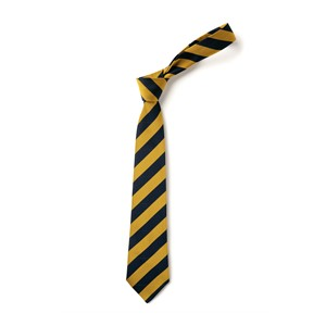 Broad Stripe Tie - Navy & Gold