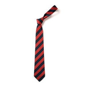 Broad Stripe Tie - Navy & Red