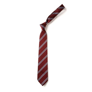Double Stripe Tie - Maroon & Sky