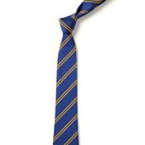 Double Stripe Tie - Royal & Gold