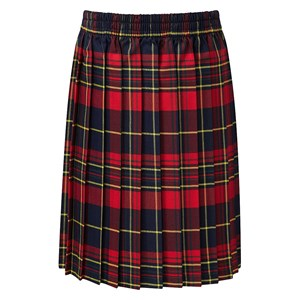 All Round Elastic Tartan Skirt