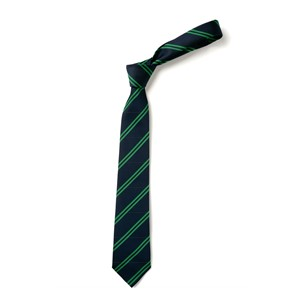 Double Stripe Tie - Navy & Green